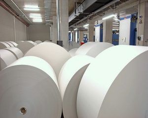 paper pulp industry